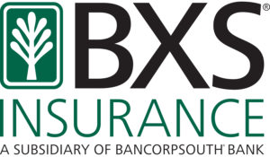 BXS Insurance_RECT Logo_170412